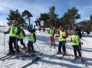 Cursos de esquí Navacerrada 2019